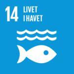 fn verdensmål nr 14 livet i havet
